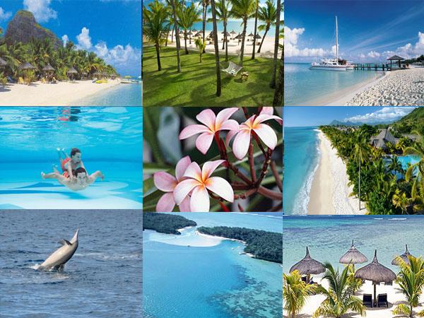 Tour Operators In Mauritius