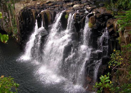 Le Parc Naturel De Rivi U00e8re Noire Ile Maurice